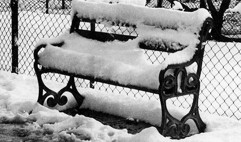 Las bancas del parque amanecieron cubiertas de nieve.